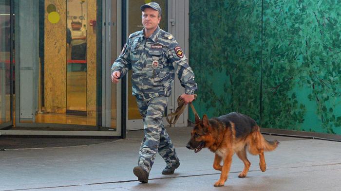 В Москве «заминировали» рынок «Садовод»