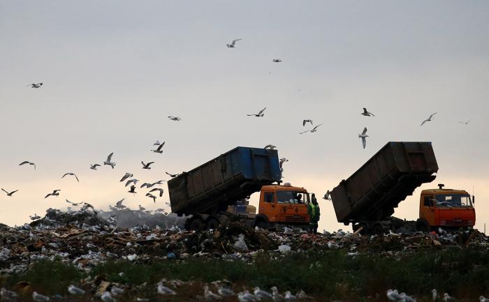 Регионам пригрозили «инструментами понуждения» за срыв мусорной реформы
