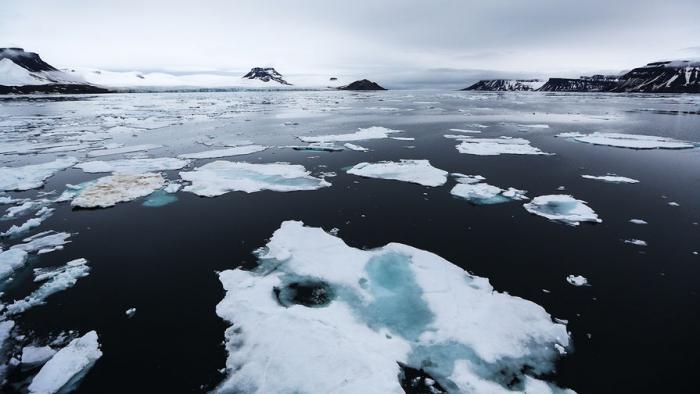 Ученые предупредили о«пробуждении» устойчивых кантибиотикам вирусов из-за таяния Арктики