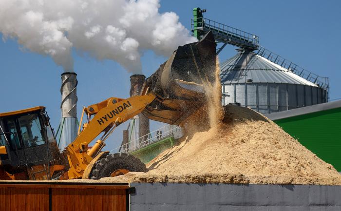 Владелец «Цветного» получит 13% в крупнейшем производителе древесины