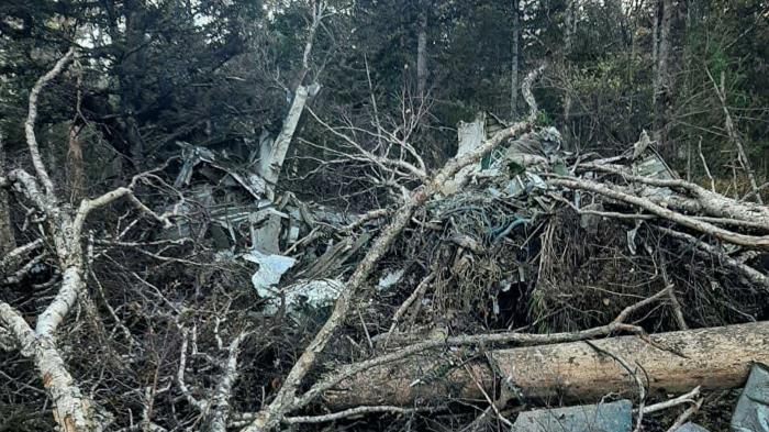 В Большехехцирском заповеднике подсчитали ущерб от падения Ан-26